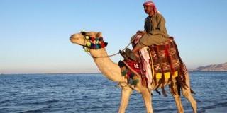 رحلات شرم الشيخ الترفيهية