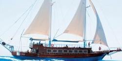 مركب القراصنة | ارخص العروض الترفيهية فى شرم الشيخ 2017.