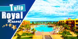 رويال تيوليب بيتش ريزورت | عروض اسعار فنادق مرسي علم 2021